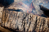 Structure of a burned tree — Stock Photo
