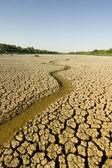 Superficie del desierto — Foto de Stock