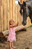 A girl with a horse — Stock Photo