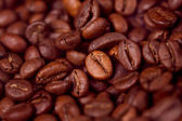 Coffee bean on wooden background — Stock Photo