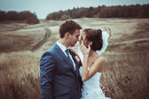 Bride and groom wedding portraits in nature — Stock Photo