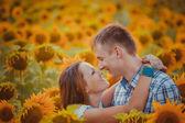 Love couple standing outdoors in sunflower field — Stok fotoğraf