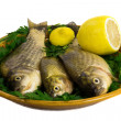 Three carp on ceramic dish , greens and lemon — Stock Photo #26979169