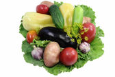A variety of vegetables and salad. Presented on a white backgrou — Stock Photo