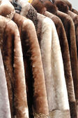 Coats made of natural fur for sale. — Stock Photo