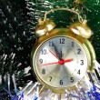 New year's eve. Before the New year five minutes. — Stock Photo #32702781