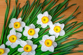 Large blossoming narcissuses on a table. — Stock Photo