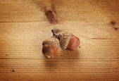 Two autumn acorns on wooden background — Stock Photo