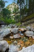 山区河流 2 — 图库照片