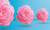 Pink roses on blue background, vector illustration — Stock Vector