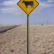 NEAR CARRIZOZO, NEW MEXICO, USA-OCT 6: Typical of cattle signs found in the American West, this one has been peppered with shotgun pellets. This photograph was taken in Oct 2011 on Highway 525 South. — Stock Photo