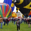 Stock Photo: ALBUQUERQUE, NEW MEXICO, US- OCTOBER 06: mass inflation of hot air balloons is pictured at 40th edition of Albuquerque International Balloon Fiestheld in October 2011.