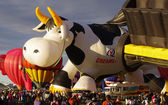 ALBUQUERQUE, NEW MEXICO, USA - OCTOBER 06: The Creamland Cow hot air balloon was a featured attraction at the 40th edition of the Albuquerque International Balloon Fiesta held in October 2011. — Stock Photo