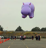 EAST RUTHERFORD, NJ, USA-OCT 5: The 2013 Macy's Thanksgiving Day Parade balloon handlers training session took place this year at MetLife Stadium. Pictured is the Happy Holiday Hippo balloon. — Stockfoto