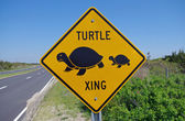 SANDY HOOK, NEW JERSEY, USA-MAY 19: A turtle crossing sign as seen in 2014. — Stock Photo