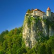 Stock Photo: Bled Castle