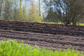 Agricultural soil in springtime — Stock Photo