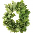 Stock Photo: Oak wreath