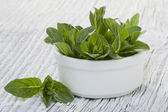 Mint leaves — Foto Stock
