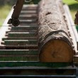 Portable sawmill — Stock Photo
