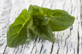 Peppermint on table — Stock Photo