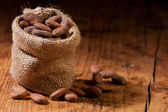 Raw Cocoa — Stock Photo