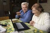 Senior Couple with a Laptop — Stock Photo
