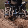 Stock Photo: Soil preparation for sowing