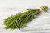 Tarragon bunch — Stock Photo