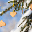 Heart-shaped gingerbread on spruce — Stock Photo