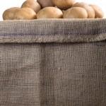 Potatoes in a burlap sack — Stock Photo #37000009