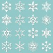 Collection of 16 different snowflakes — Stock Vector #34901799