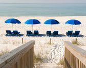 Beach chairs with umbrellas lined up on the beach. — Stock Photo