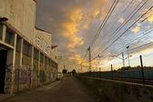 цикл завод сцена — Стоковое фото