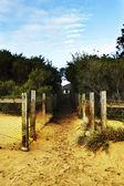 Beach path — Stock Photo
