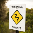 Stock Photo: Warning snakes