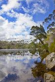 Jezioro tasmanii — Zdjęcie stockowe