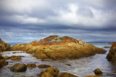 Bay of Fires — Stock Photo