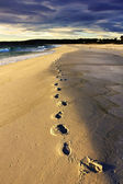 Footstep on the beach — Stock Photo