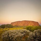 Uluru — Stock Photo