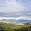 Banks Peninsula — Stock Photo