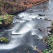 A small creek in the park. Long exposure, smooth effect. — Stock Photo #37166085