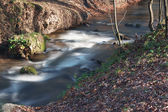 A small creek in the park. Long exposure, smooth effect. — Stock Photo