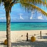Playa del Carmen beach, Mexico — Stock Photo