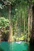 Cenote Ik Kil, Mexico — Stock Photo