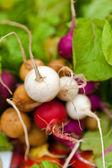 Organiczne rzodkiewki w rynku świeżej żywności — Zdjęcie stockowe