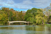 Central Park Lake, New York City, United States of America — Stock Photo