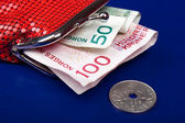 Norwegian money in a purse — Stock Photo