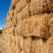 Squared bales of straw — Stock Photo