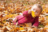 Baby discovering autumn leaves — Stock Photo